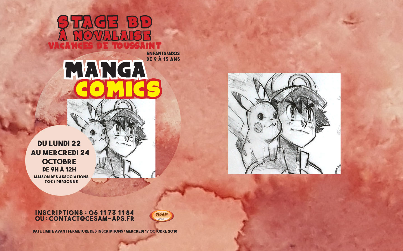 Stage Manga Comics Novalaise par CESAM